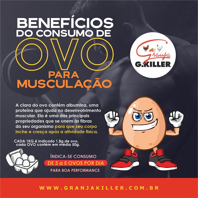 Propaganda Benefícios do Consumo de Ovo para Musculação